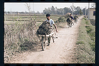 Chinese peasants transport fertile mud on single wheel carts at a village in Jiangsu province, China, 1998.