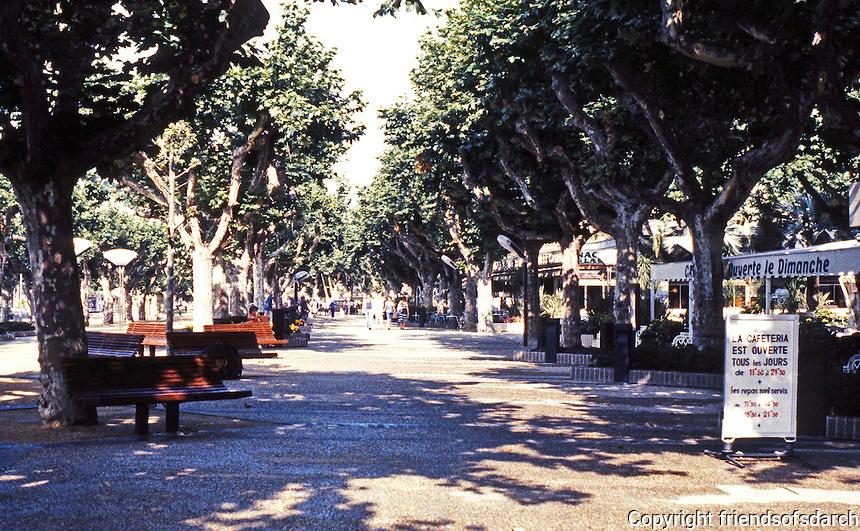 Cannes: Promenade on tree-lined street. Photo '83.