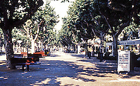 Cannes: Promenade on tree-lined street. Photo '83.