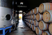 OAK BARREL CASKS for AGING WINE at VENTANNA VINEYARDS - MONTEREY COUNTY, CALIFORNIA