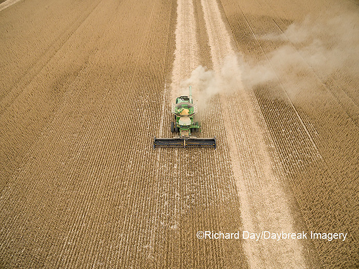 63801-09507 Soybean Harvest, John Deere combine harvesting soybeans - aerial - Marion Co. IL