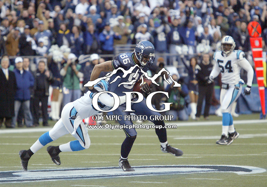 January 22, 2005:  Seattle Seahawks tight end Jerramy Stevens hauled in a Matt hasselbeck pass against the Carolina Panthers at Quest Field in Seattle, WA.