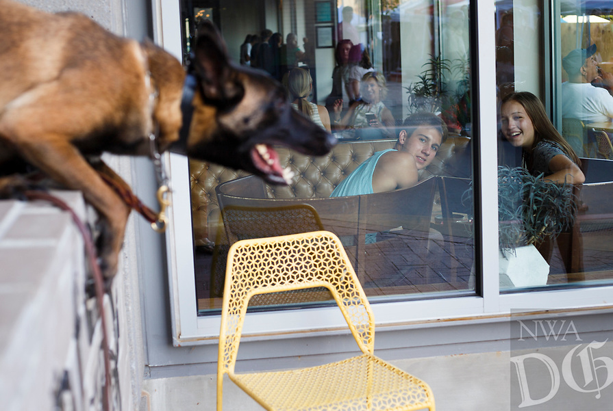 NWA Democrat-Gazette/CHARLIE KAIJO Bystanders look over at Camille, the dog, as she barks during the First Friday event, Friday, August 3, 2018 at the Bentonville Square in Bentonville.