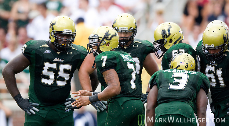 University of South Florida Bulls quarterback and Lincoln High School graduate B.J. Daniels looks to the sideline from the huddle in the second half of the Bulls 17-7 defeat of the Florida State Seminoles during their NCAA football game in Tallahassee, Florida September 26, 2009.