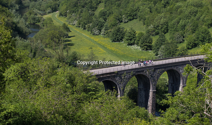 11/06/15<br /> <br /> Wet weather followed by sunshine has turned the Derbyshire Dales into a stunning green and lush paradise. Here, cyclists and walkers take in the vista as buttercups line the valley floor as they cross the famous Headstone Viaduct on the Monsal Trail near Bakewell in the Peak District National Park.<br /> <br /> All Rights Reserved: F Stop Press Ltd. +44(0)1335 418629   www.fstoppress.com.