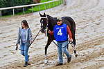 March 14, 2020: Lady Apple (4) with jockey Ricardo Santana, Jr. aboard during the Azeri Stakes at Oaklawn Racing Casino Resort in Hot Springs, Arkansas on March 14, 2020. Ted McClenning/Eclipse Sportswire/CSM (Photo by Ted McClenning/Eclipse Sportswire/Cal Sport Media)