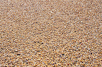 Close up photo of beach sand