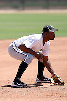 Juan Silverio, Chicago White Sox 2010 extended spring training..Photo by:  Bill Mitchell/Four Seam Images.