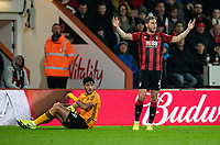 Bournemouth's Dan Gosling (right) protesting after a foul on Wolverhampton Wanderers' Raul Jimenez (left) <br /> <br /> Photographer David Horton/CameraSport<br /> <br /> The Premier League - Bournemouth v Wolverhampton Wanderers - Saturday 23rd November 2019 - Vitality Stadium - Bournemouth<br /> <br /> World Copyright © 2019 CameraSport. All rights reserved. 43 Linden Ave. Countesthorpe. Leicester. England. LE8 5PG - Tel: +44 (0) 116 277 4147 - admin@camerasport.com - www.camerasport.com