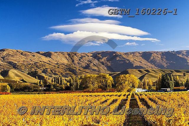 Tom Mackie, LANDSCAPES, LANDSCHAFTEN, PAISAJES, photos,+Cromwell, New Zealand, Tom Mackie, Worldwide, autumn, autumnal, beautiful, cloud, clouds, fall, holiday destination, horizont+ally, horizontals, restoftheworldgallery, scenery, scenic, season, tourism, tourist attraction, travel, vacation, vineyard, w+eather,Cromwell, New Zealand, Tom Mackie, Worldwide, autumn, autumnal, beautiful, cloud, clouds, fall, holiday destination, h+orizontally, horizontals, restoftheworldgallery, scenery, scenic, season, tourism, tourist attraction, travel, vacation, vine+,GBTM160226-1,#l#
