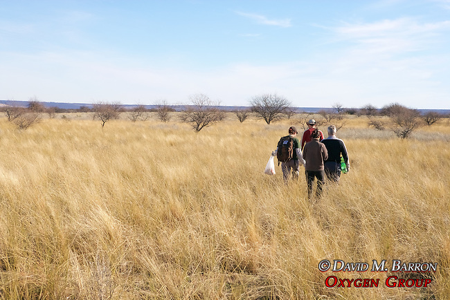 Working On Survey