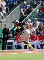 Francisco Mejia - San Diego Padres 2020 spring training (Bill Mitchell)