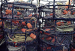 Crab traps at Bodega Bay