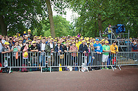 yellow fans at the podium<br /> <br /> 2014 Tour de France<br /> stage 3: Camebridge-London (155km)
