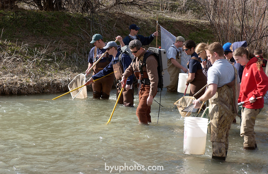 An Integrative Biology class practices fish shocking with the assistance of Dr. Mark Belk..March 15, 2005..Photo by Steve Walters/BYU