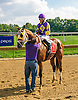 Alfredo Romana winning at Delaware Park on 10/3/16
