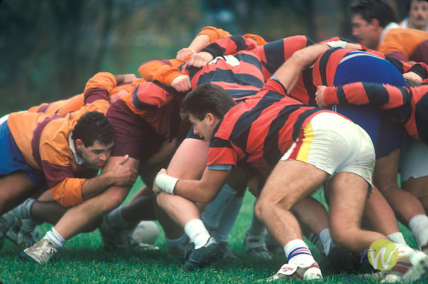 Rugby, Susquehanna University