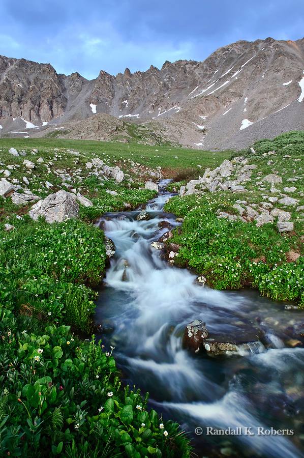 Water flows from snowfields on Fletcher Mountain through the wildflower meadows of Mayflower Gulch, south of Copper Mountain, Colorado