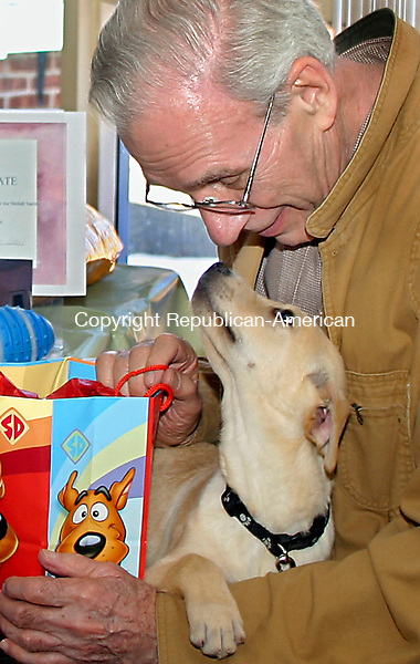 "SOUTHBURY, CT -09 MARCH 2007 --030907DA01-- Bob Smith of Woodbury shares a glance with his new Yellow Labrador retriever puppy, 'Shiloh' after recieving a gifts during a ""Puppy Shower"" hosted by Lutheran Home of Southbury. Smith's late wife Jeanne was a resident at the home where Smith would take his old dog Rufus to visit. Rufus recently passed away and the Lutheran Home donated the pure-bred dog from Montana as well as other gifts.   Darlene Douty/Republican-American"