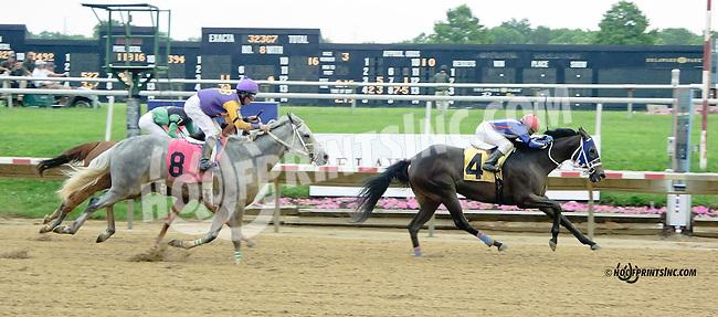 Harvest of Hope winning at Delaware Park racetrack on 6/19/14