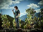 Saillon, le 1er octobre  2016, Valentina Andrei , vigneronne- encaver© sedrik nemeth