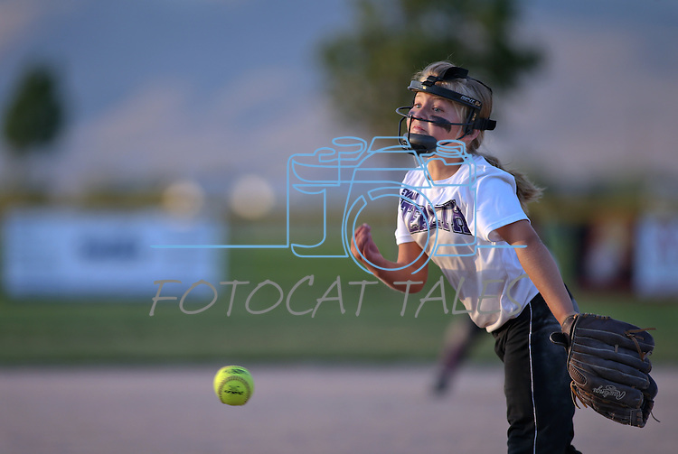 Reno Predators and Reno Stealth compete in a 10U game in the AWS World Series at Edmonds Sports Complex, in Carson City, Nev., on Friday, July 11, 2014.<br /> Photo by Cathleen Allison