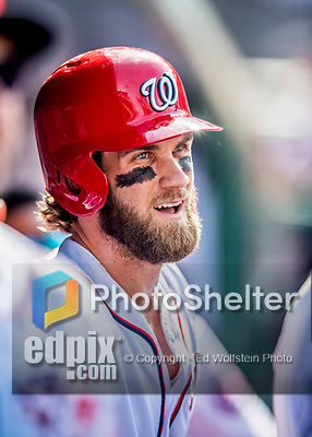 29 June 2017: Washington Nationals outfielder Bryce Harper looks out from the dugout during play against the Chicago Cubs at Nationals Park in Washington, DC. The Cubs rallied against the Nationals to win 5-4 and split their 4-game series. Mandatory Credit: Ed Wolfstein Photo *** RAW (NEF) Image File Available ***