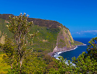 A view of sacred, historic Waipi'o Valley from a lookout point, Hamakua District, Big Island.