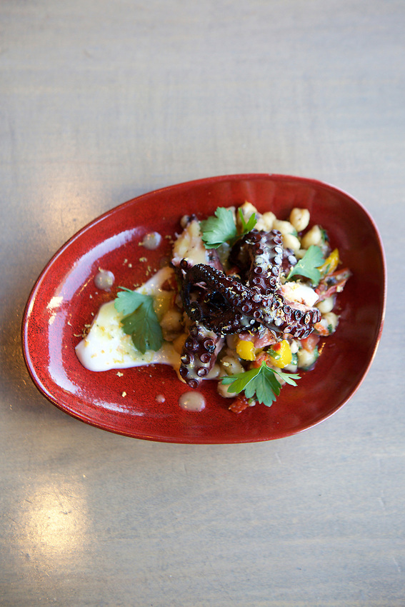 Queens, NY - July 9, 2017:  Grilled Octopus on Three Bean Salad at Allora Italian Kitchen and Bar in Bayside.<br />