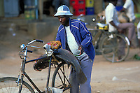 Man fixing a Nile perch fish behing his bicycle