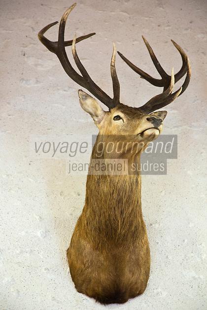 Europe/France/Centre/41/Loir-et-Cher/Sologne/Chambord: Parc de Chambord - Détail trophées dans un pavillon de chasse -  // France, Loir et Cher, Loire Valley listed as World Heritage by UNESCO, Chateau de Chambord :