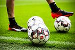 11.05.2019, Signal Iduna Park, Dortmund, GER, 1.FBL, Borussia Dortmund vs Fortuna Düsseldorf, DFL REGULATIONS PROHIBIT ANY USE OF PHOTOGRAPHS AS IMAGE SEQUENCES AND/OR QUASI-VIDEO<br /> <br /> im Bild | picture shows:<br /> Spielbaelle der Partie, <br /> <br /> Foto © nordphoto / Rauch