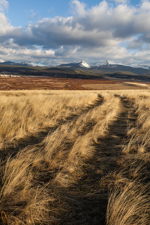 A seldom-used road through the prairie in Western Montana curves off into the distance with the Anaconda mountain range in the background.