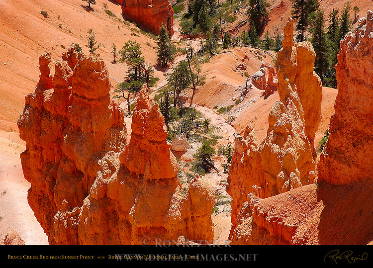 Bryce Creek Bed and Hoodoos from Sunset Point, Bryce Canyon National Park, Utah