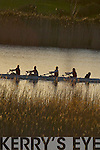 A crew rows down the River Laune as the sun sets during the Kerry Head of the River Rowing competition in Killorglin last Saturday..