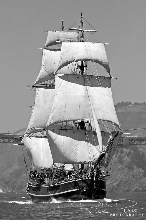 The tall ship Bounty sails into San Francisco Bay. Built in 1960 for the MGM studios movie 'Mutiny on the Bounty' starring Marlon Brando the ship was constructed from the original ships drawings and built the same way as the original Bounty was 200 years earlier