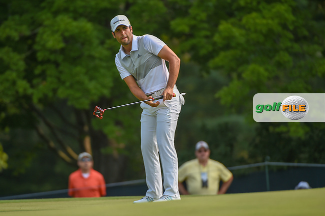 Adrian Otaegui (ESP) watches his putt on 5 during 4th round of the 100th PGA Championship at Bellerive Country Club, St. Louis, Missouri. 8/12/2018.<br /> Picture: Golffile | Ken Murray<br /> <br /> All photo usage must carry mandatory copyright credit (© Golffile | Ken Murray)