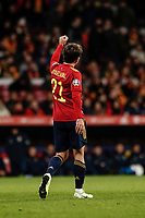 18th November 2019; Wanda Metropolitano Stadium, Madrid, Spain; European Championships 2020 Qualifier, Spain versus Romania;  Mikel Oyarzabal (esp)  celebrates his goal which made it 5-0 - Editorial Use