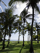 Flic en Flac, Mauritius. La Pirogue tourist resort. Hammock between palm trees by sea.
