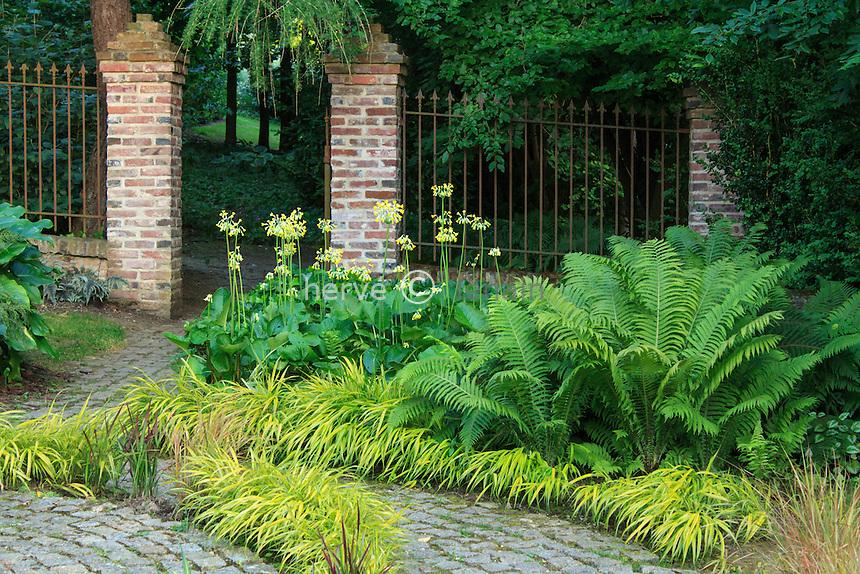 Jardins du pays d'Auge (mention obligatoire dans la légende ou le crédit photo):.autour du puit, graminées, fougères et primevères.