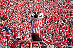 Wisconsin Badgers mascot Bucky Badgers celebrates during an NCAA college football game against the San Jose State Spartans on September 11, 2010 in Madison, Wisconsin. The Badgers beat San Jose State 27-14. (Photo by David Stluka)