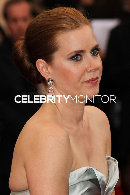 """NEW YORK CITY, NY, USA - MAY 05: Amy Adams at the """"Charles James: Beyond Fashion"""" Costume Institute Gala held at the Metropolitan Museum of Art on May 5, 2014 in New York City, New York, United States. (Photo by Xavier Collin/Celebrity Monitor)"""