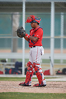 Boston Red Sox catcher Eddy Reynoso (44) during a Minor League Spring Training game against the Baltimore Orioles on March 20, 2018 at Buck O'Neil Complex in Sarasota, Florida.  (Mike Janes/Four Seam Images)