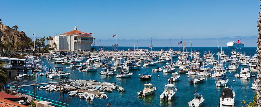 Catalina Island, CA, Avalon, harbor, USA, Santa Catalina, Island, Yachts, Moored,