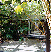 The back garden is dominated by a steel frame with towering bamboo growing up it