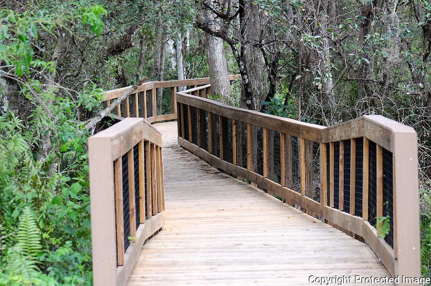 Entrance to the Cypress Trail Boardwalk at Arthur Marshall Loxahatchee Preserve, Boynton Beach, Florida.
