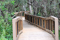 Entrance to the Cypress Trail Boardwalk at Arthur Marshall Loxahatchee Preserve, Boynton Beach, Florida.