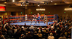 2014 Western Regional Boxing Championships
