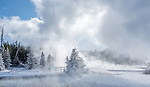 Yellowstone winter is amazing.