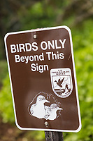 "A ""Birds Only"" sign at at Kilauea Point National Wildlife Refuge, Kaua'i."
